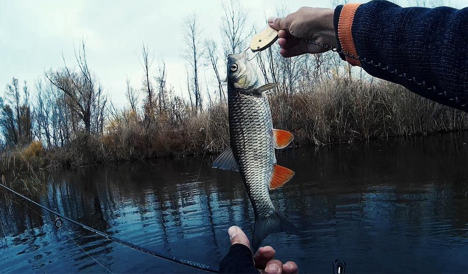 Отдых с рыбалкой в Подмосковье